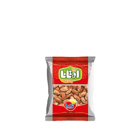 roasted and salted red watermelon seed 40 gr
